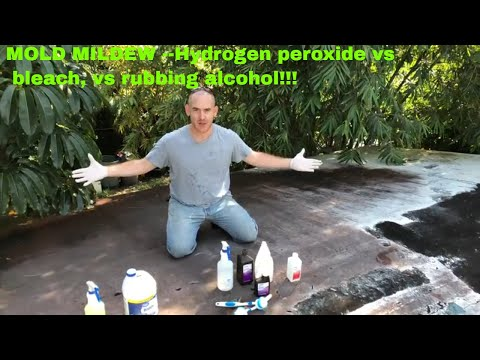 Hydrogen peroxide vs bleach vs alcohol on mold see what happens to mildew!!!