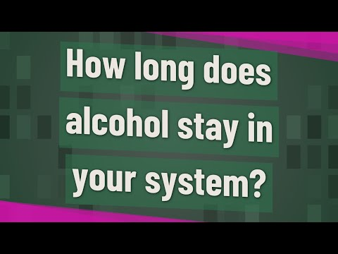 How long does alcohol stay in your system?