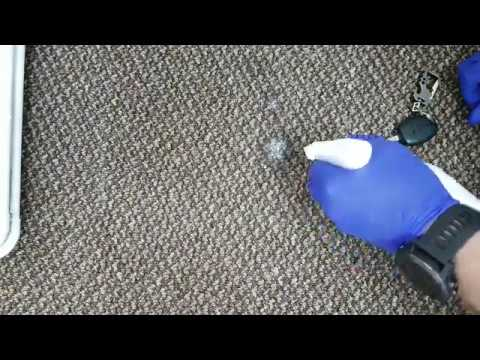 Paint stain removal