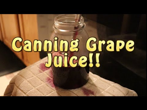 Canning grape juice ~ concord grapes!