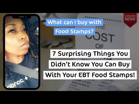 What can i buy with food stamps? 7 things you can buy with ebt food stamps!