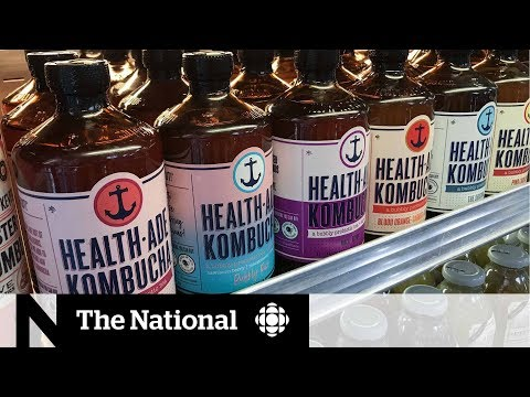 Kombucha could contain more alcohol than advertised