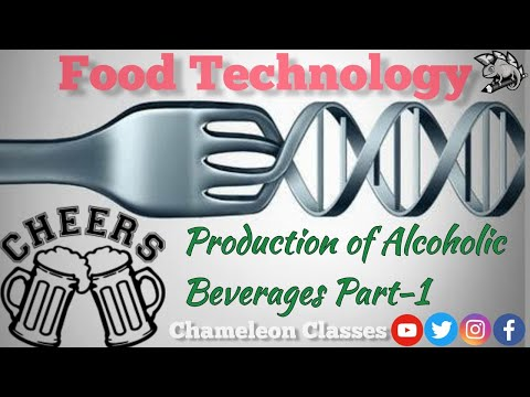 How is beer made?   production of alcoholic beverages part-1 (beer)   brewing process   food tech  