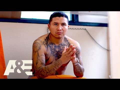 Behind bars: rookie year: top 7 prison gang moments   a&e
