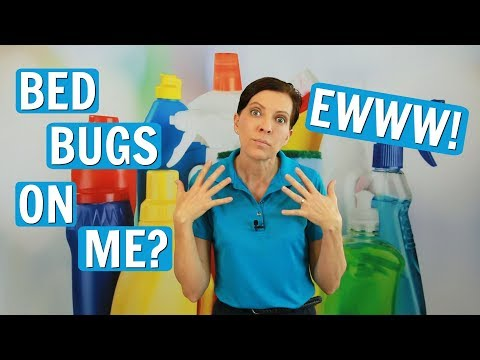 Bed bugs - how to get rid of bed bugs