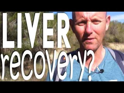How long does it take for the liver to recover after quitting alcohol?